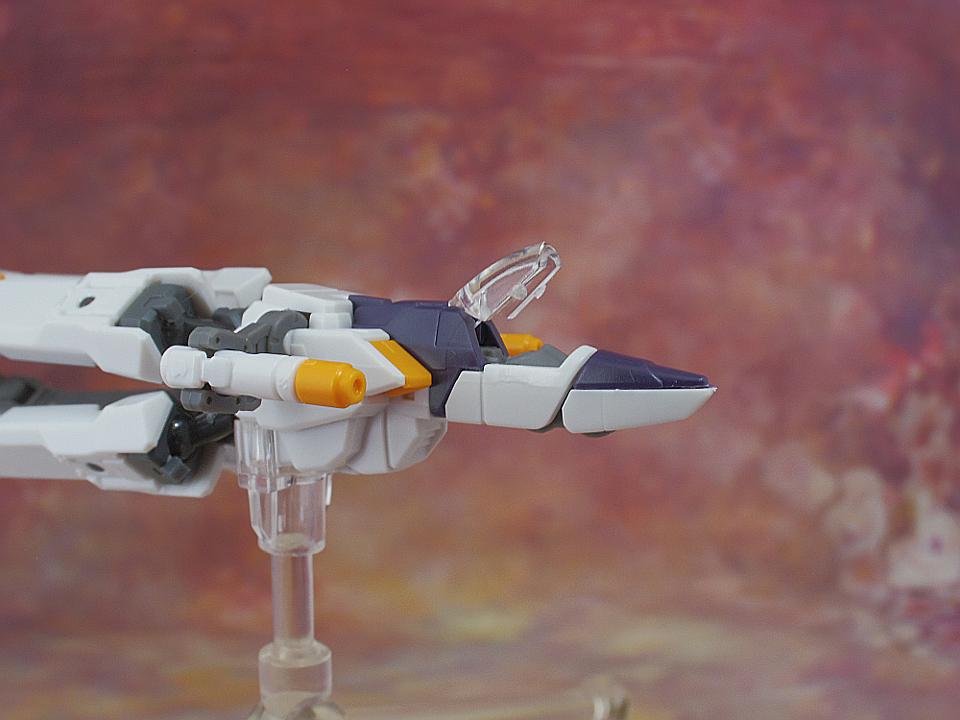 RG クロスボーンガンダムX1-21