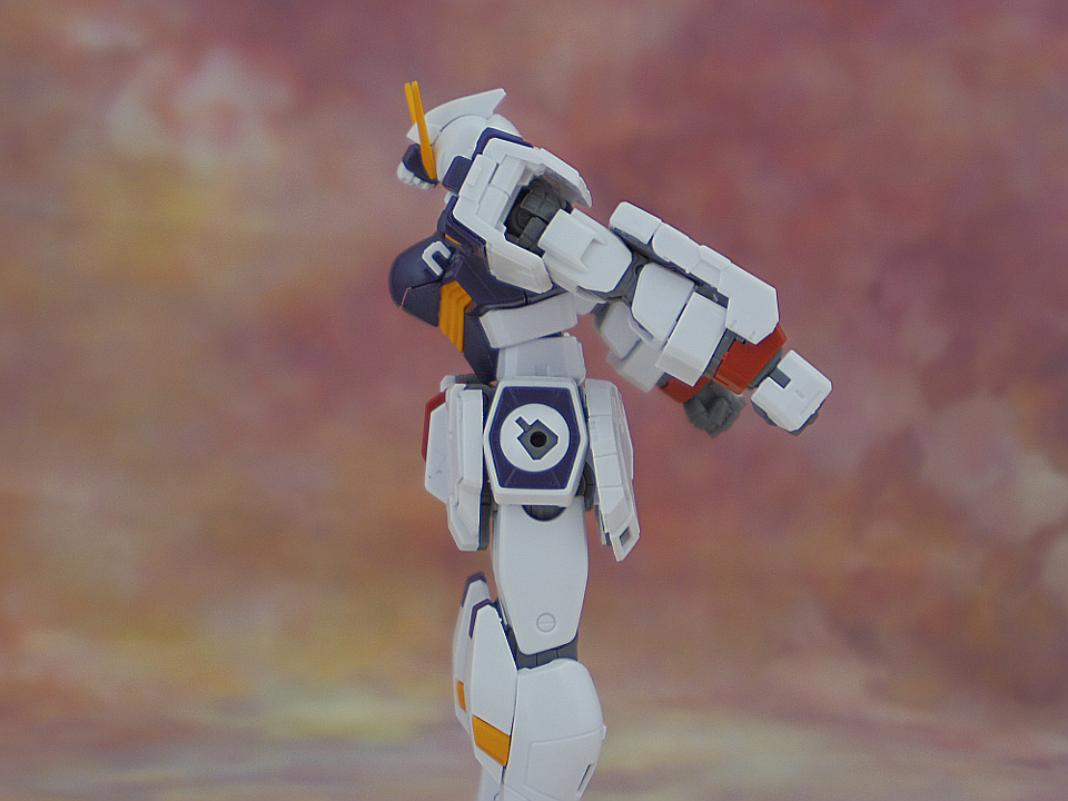 RG クロスボーンガンダムX1-63