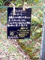 富山市ファミリーパーク9