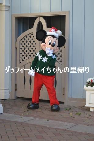 2019-3-5用 (3)