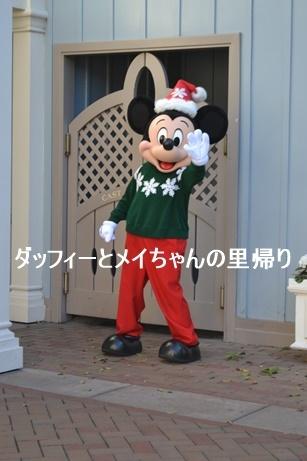 2019-3-5用 (4)
