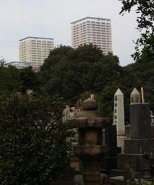 2010012102.jpg