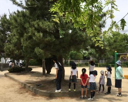 20190526たこ公園