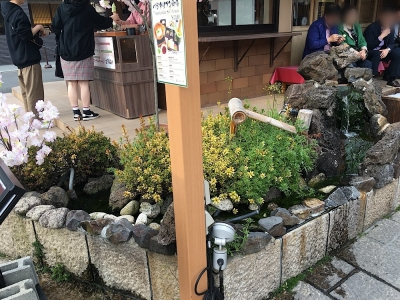 嵐山桜ソフト前