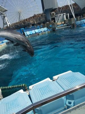 名古屋港水族館02