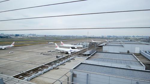 羽田空港屋上です。