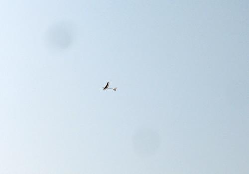 2機目のkh-20、飛行ちう~! その1!