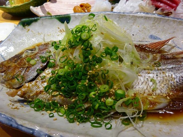 魚の蔵2 (9)