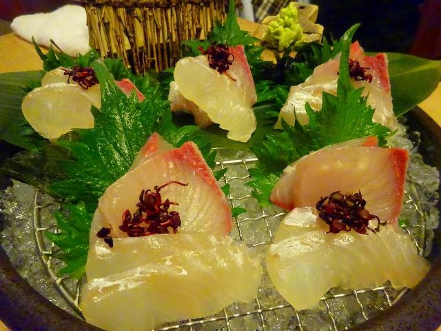 魚ばか106 (6)