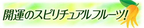 開運のスピリチュアルフルーツブログバナー