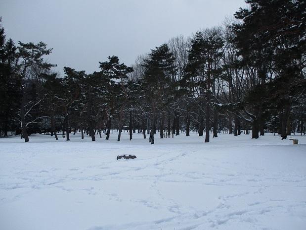 札幌雪円山神宮