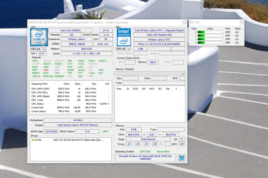 Core i5-8265U_gpu-z_04Hwinfo_02t