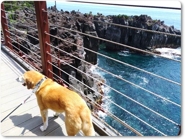 門脇吊橋で