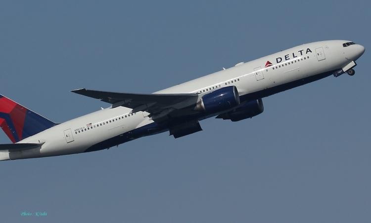 D-1029.jpg