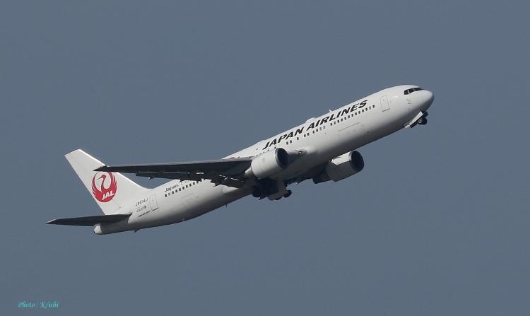 D-1033.jpg