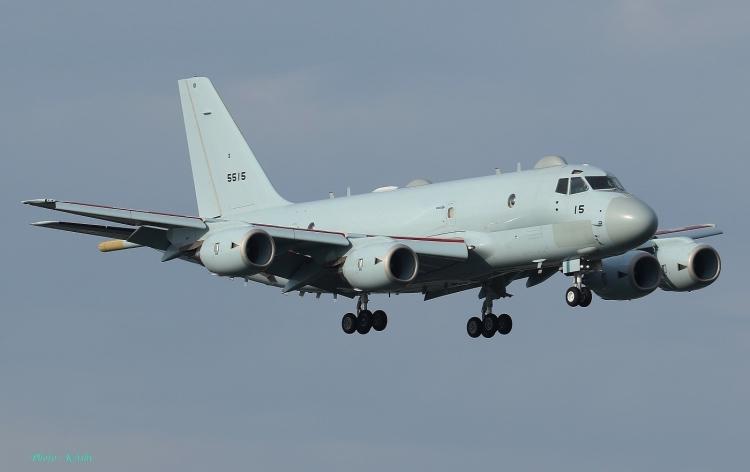 D-1047.jpg