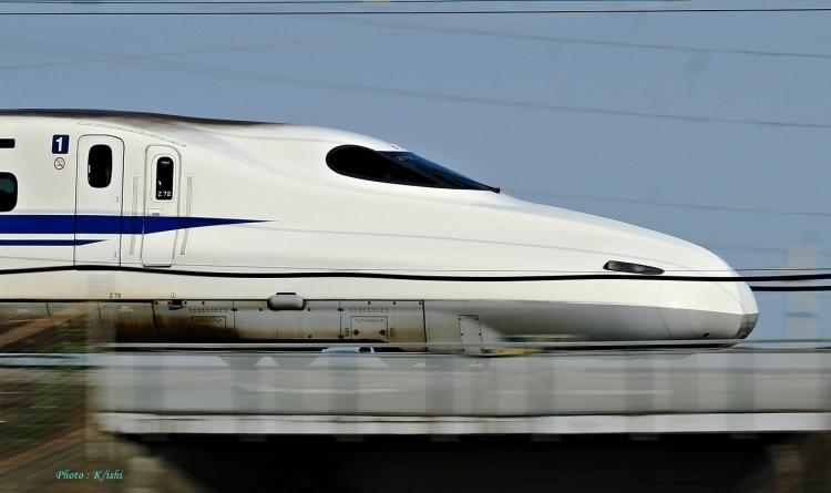 D-1135.jpg