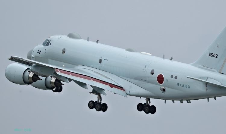 D-1141.jpg