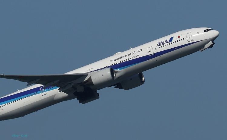 E-331.jpg