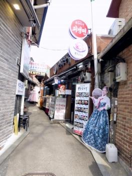 韓国 (81)