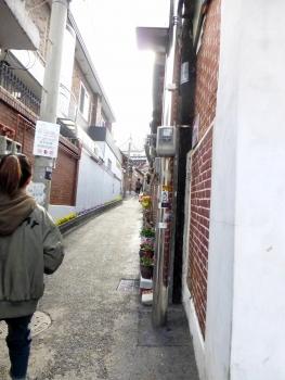韓国 (83)