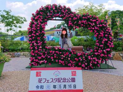 2019年5月花フェスタ記念公園-crop
