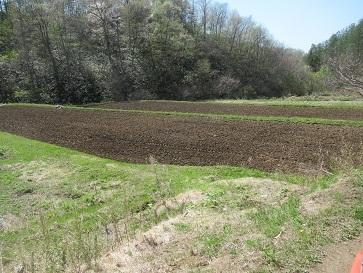 田の耕運2
