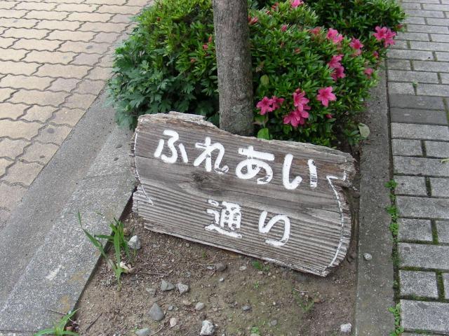 静岡 182