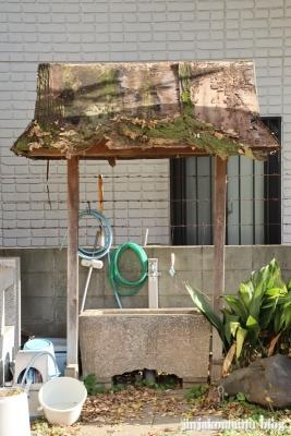 新田稲荷神社(足立区新田)12
