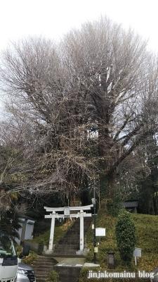 水神社(文京区目白台)1