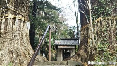 水神社(文京区目白台)8