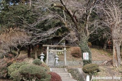 神明神社(八王子市裏高尾町)1