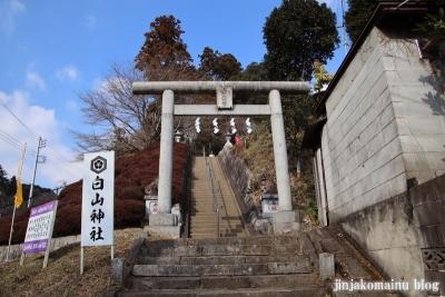 白山神社(八王子市廿里町)1