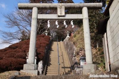 白山神社(八王子市廿里町)2
