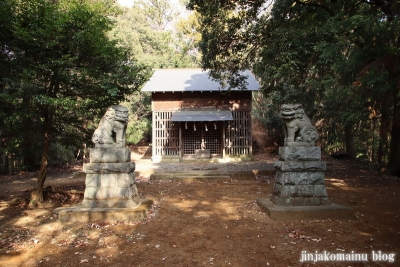 白山神社(八王子市廿里町)14
