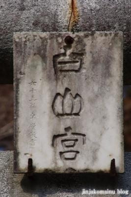 白山神社(八王子市廿里町)3