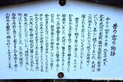 熊野神社(八王子市東浅川町)11