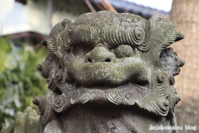 松本天祖神社(江戸川区松本)23