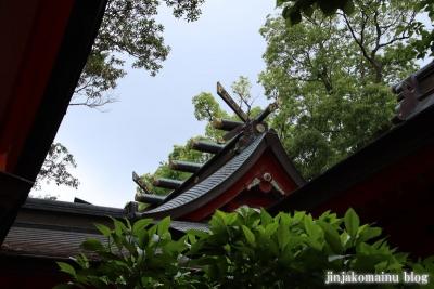 枚聞神社(指宿市開聞十町)13