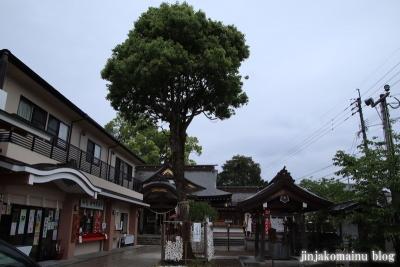 天御中主神社(鹿児島市宇宿)1