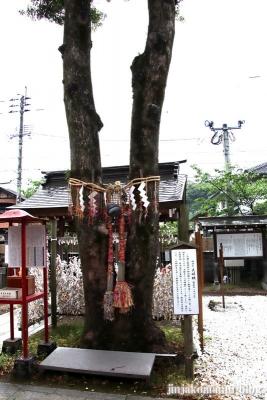 天御中主神社(鹿児島市宇宿)19