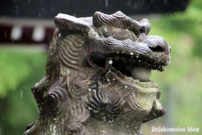 鹿児島神社(鹿児島市草牟田)18