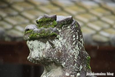 鹿児島神社(鹿児島市草牟田)19