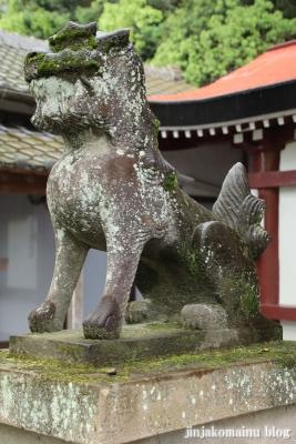 鹿児島神社(鹿児島市草牟田)15