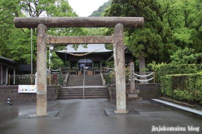 仙厳園(鹿児島市吉野町)34