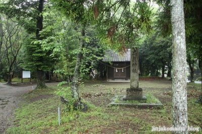 高屋神社(宮崎市村角町橘尊)1
