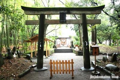 高屋神社(宮崎市村角町橘尊)5