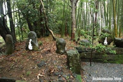 高屋神社(宮崎市村角町橘尊)7