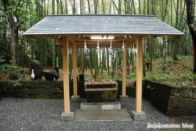 高屋神社(宮崎市村角町橘尊)9
