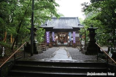 高屋神社(宮崎市村角町橘尊)10